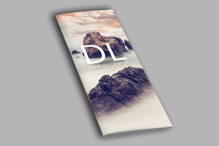 5f338dfba76b9DL-Thick-cover-Booklets1.jpg